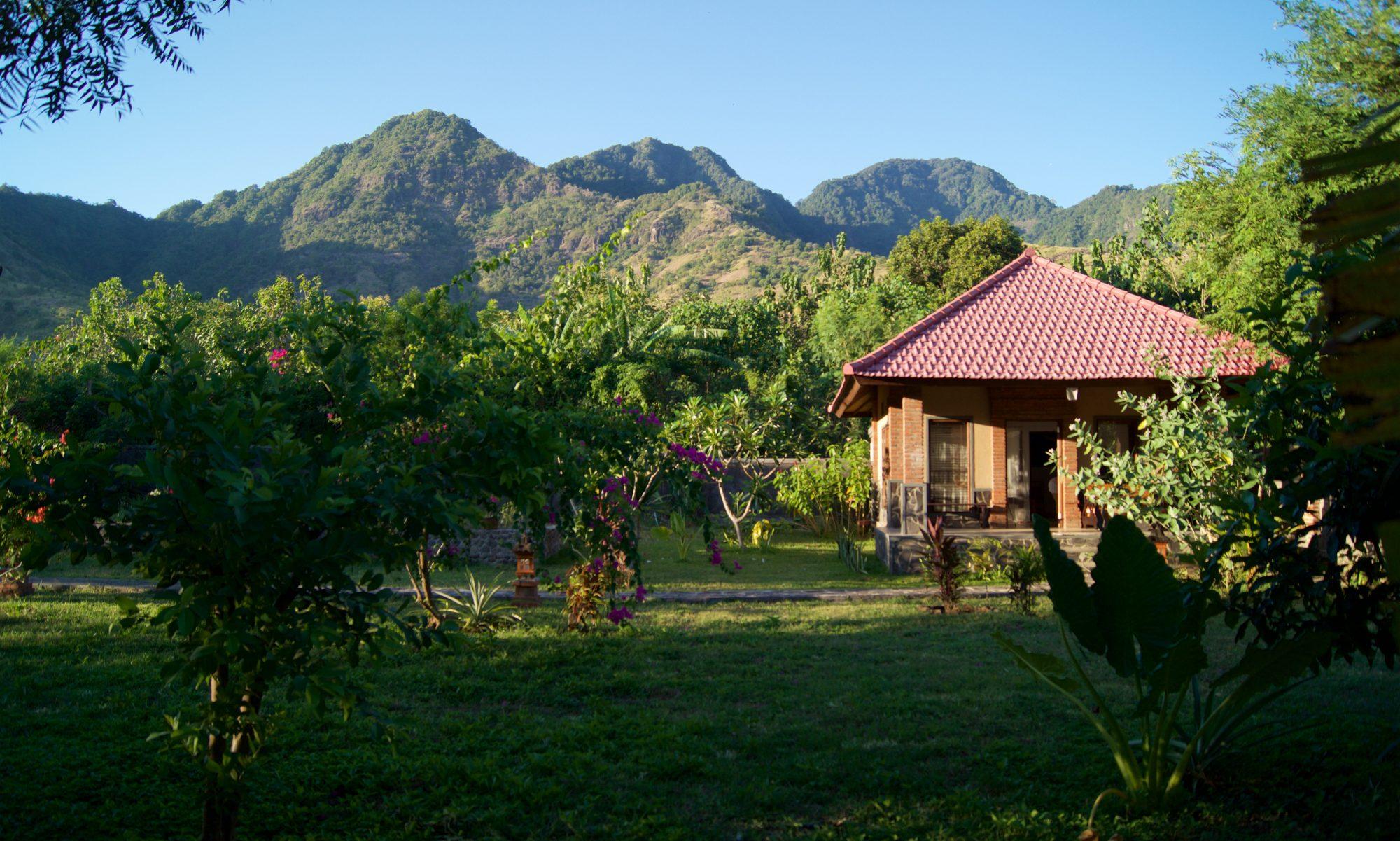 Tegal Sari - Homestay - North Bali